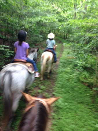 Elkton, Wirginia: Mountaintop Ranch Wilderness Trail Rides