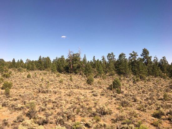 Williams, AZ: photo8.jpg