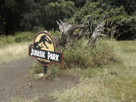 Kaneohe, HI: JURASSIC PARK!!