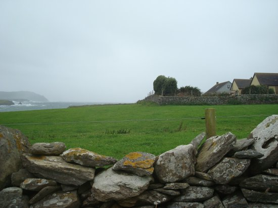 Ballyferriter, Ireland: land next to Ferriter's Cove B&B. You can see the water in the bckground
