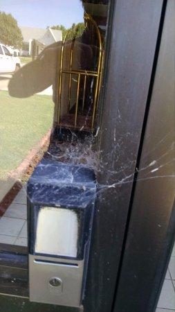 Enid, Οκλαχόμα: Spider web on card reader