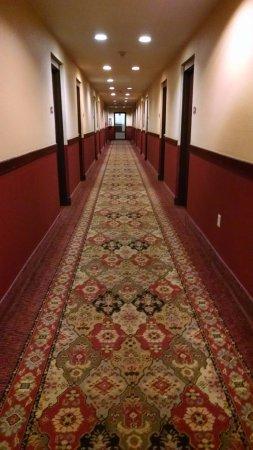 Enid, Οκλαχόμα: Carpet nasty, smelled like smoke & ??