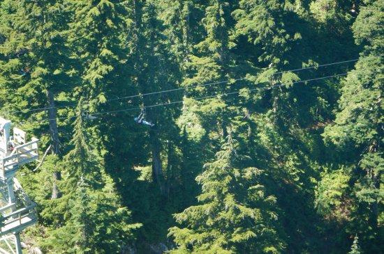 Kuzey Vancouver, Kanada: View of the zipline from the 'eye'