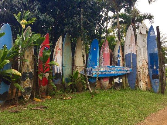 Makawao, Hawaï : Surfboard Fence
