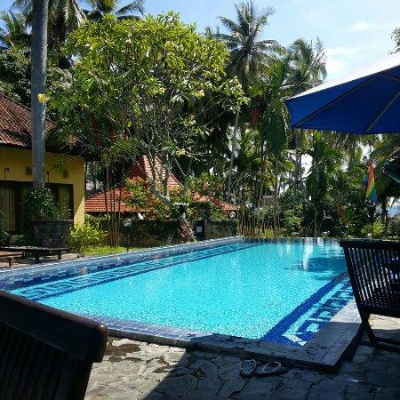 Pool and spa. - Picture of Bali au Naturel, Bondalem