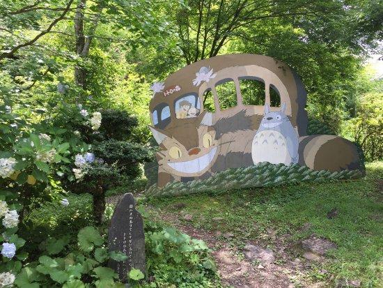 Saiki, Japan: トトロの森