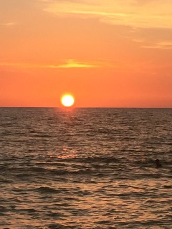 Barefoot Beach Preserve: photo4.jpg