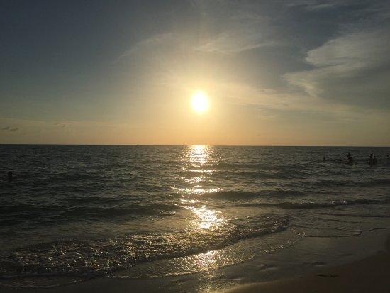 Barefoot Beach Preserve: photo5.jpg