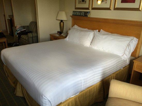 Holiday Inn Express Hotel & Suites Universal Studios Orlando: Bedroom