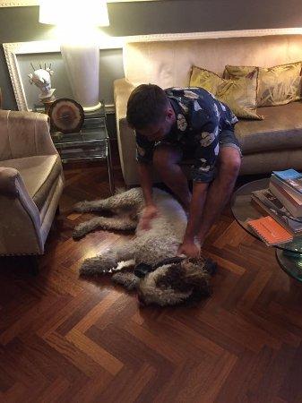 Residenza Vespucci: Lapo is impossible dog!