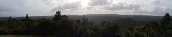 Waipoua Forest, Nueva Zelanda: viewing tower
