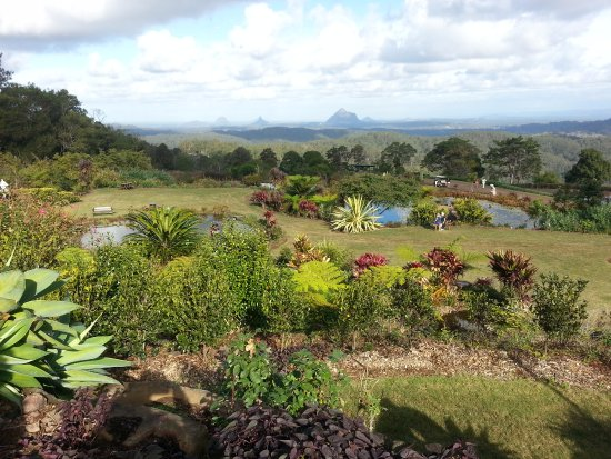 Garden feature at Maleny Botanic Gardens & Bird World