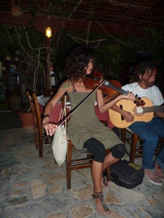 live music at Petrino