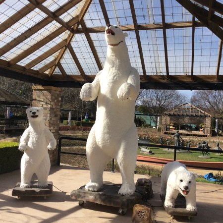Pokolbin, Australia: Animated polar bears