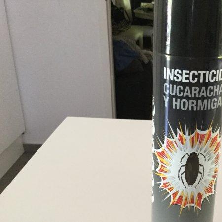 La Eliana, Hiszpania: Deze spuitbus hebben we gekregen om de kakkerlakken te verdrijven.