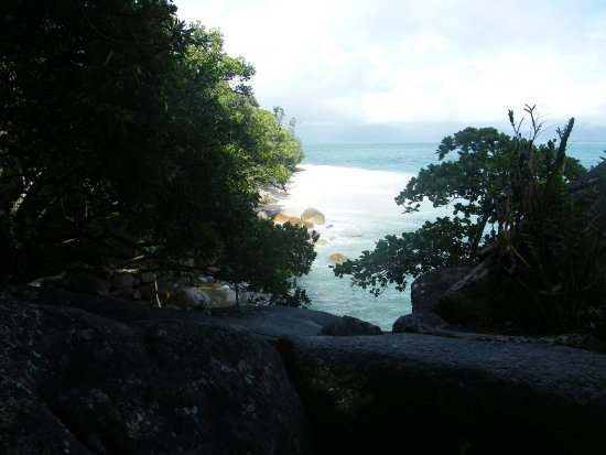 Fitzroy Island, ออสเตรเลีย: nudley beach neat resort