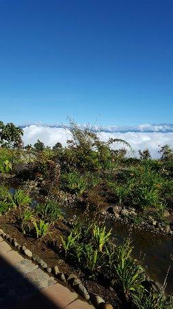 Mount Hagen, Papúa Nueva Guinea: 20160716_084418_large.jpg