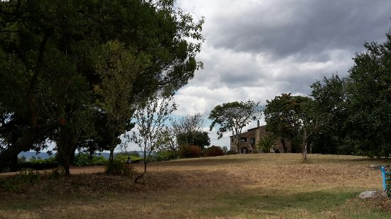 Azienda Agrituristica Le Macchie Alte : 20160716_154124_large.jpg