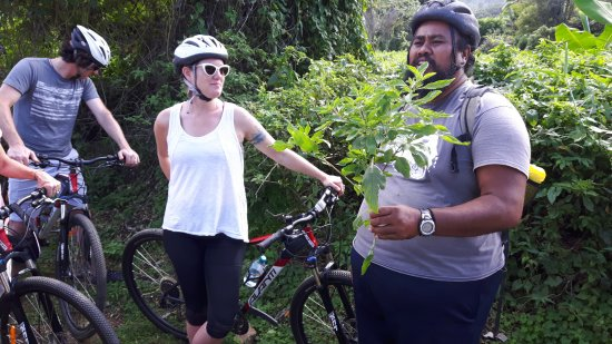 Storytellers Eco Cycle Tours: Urter