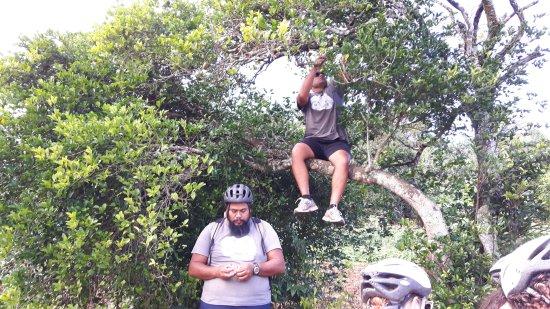 Storytellers Eco Cycle Tours: Mandariner