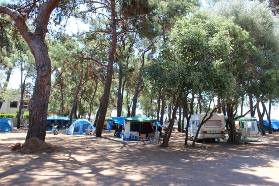 Hipo Camp