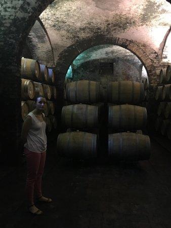 Abbadia di Montepulciano, Italien: Villa Sant'Anna