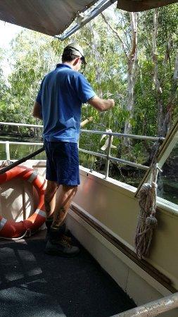 Palm Cove, Australia: Snapchat-2466982392043412663_large.jpg