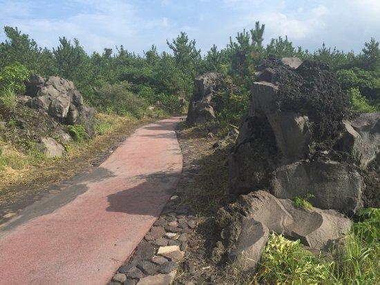 Sakurajima Lava Nagisa Promenade