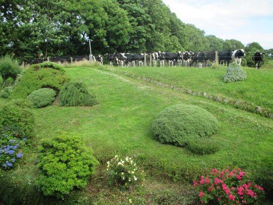 PK Lodge: Garden