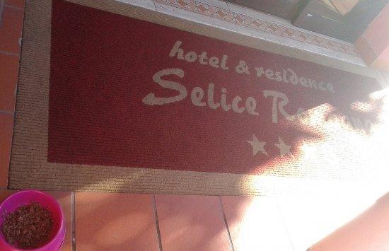 Hotel Residence Selice Romagna: Accettiamo gli animali