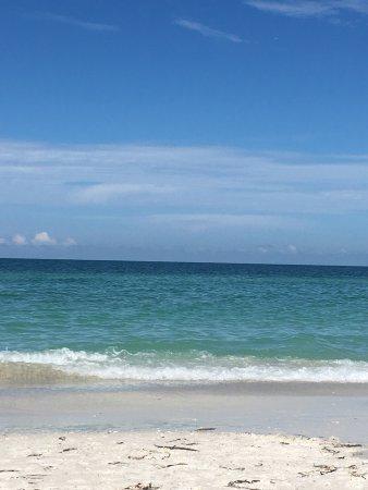 An Island Getaway at Palm Tree Villas: photo0.jpg