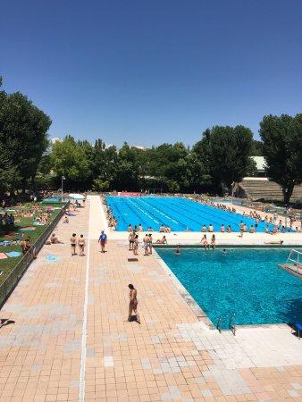 Piscina ol mpica fotograf a de piscina de verano de la for Piscina olimpica madrid