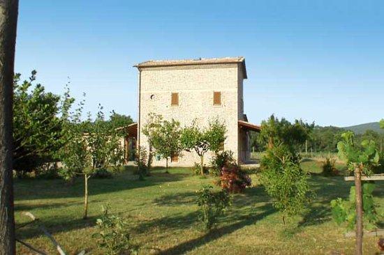 Pari, Itália: Agriturismo Val di Farma