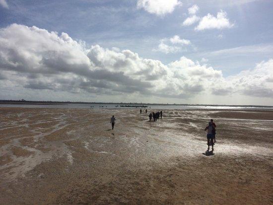 Tanjung Benoa, Indonesia: photo9.jpg