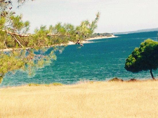 Brijuni National Park, Kroatië: National Park Brijuni (Nacionalni Park Brijuni)