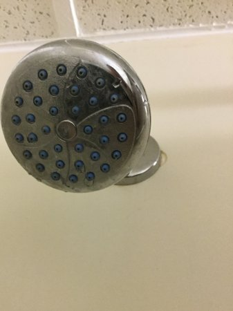 Seekonk, Массачусетс: Shower head