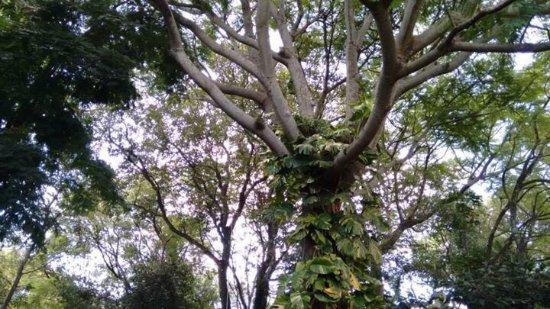 São Gabriel, RS: Aconchego em meio à natureza
