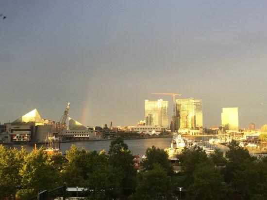 Royal Sonesta Harbor Court Baltimore: photo1.jpg