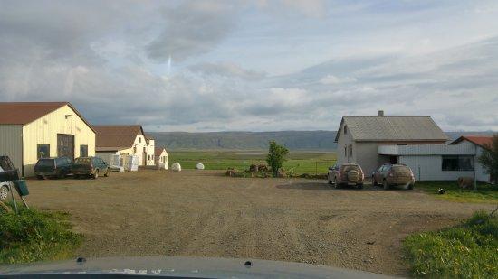 Reykholt, أيسلندا: entrance to the farm