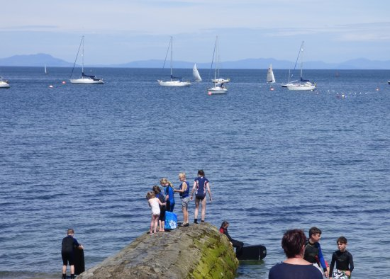 Skerries, Irlanda: Life is simple - kids jumping into the north harbour!