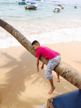 Bentota, Sri Lanka: Kære Thush, tak for en rigtig god tur.