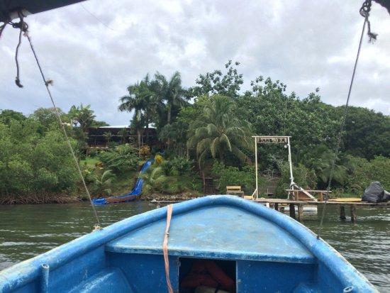 Isla Solarte, ปานามา: photo0.jpg