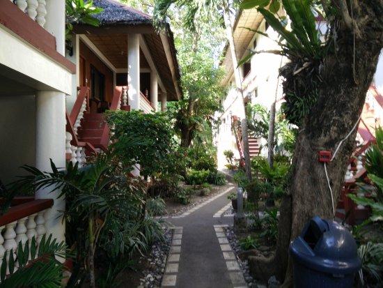 Tonglen Beach Resort: Great view