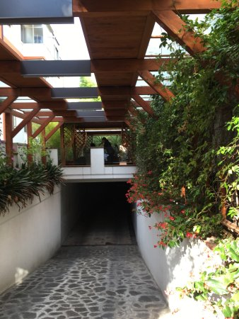 Hotel Gardenia: photo1.jpg