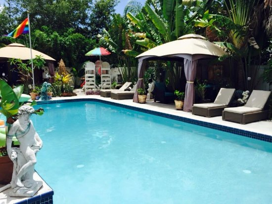 GayStPete House: Relax in the heated pool!