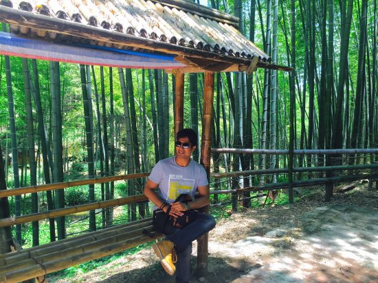 Changning County, China: Dev Mehra at Shu'nan Bamboo forest.