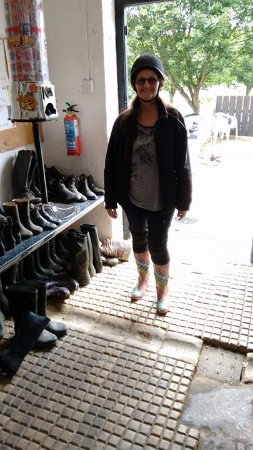 Newquay Riding Stables: Getting ready to go. Hats and boots supplied.