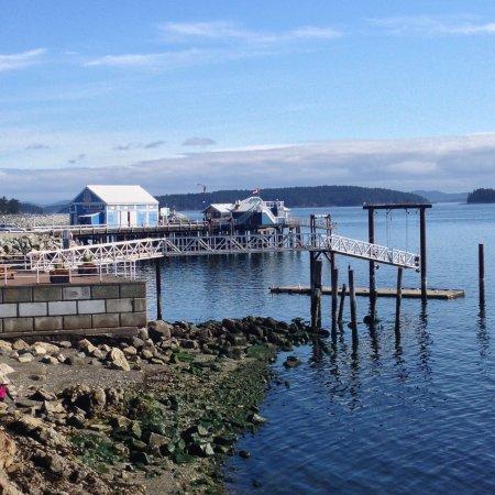 Zdjęcie Sidney Waterfront Inn & Suites