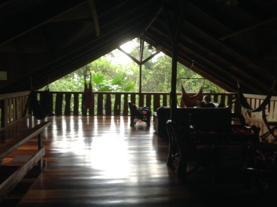 Casa Divina Lodge: Open area above dining room, a terrific place to see birds, read, relax.