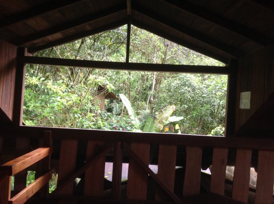 Casa Divina Lodge: Area above dining room, fabulous for birdwatching, great place to read in the afternoon.